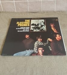 Buy this rare Electric Prunes record by clicking here