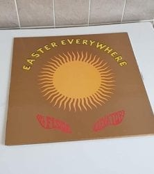 Buy this rare 13th Floor Elevators record by clicking here