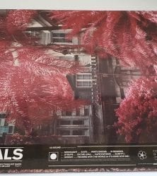Buy this rare Foals record by clicking here