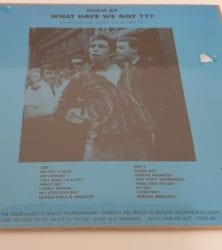 Buy this rare Sham 69 record by clicking here