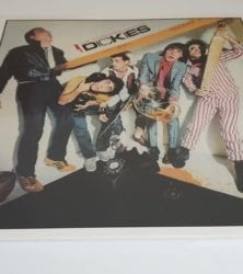 Buy this rare Dickies record by clicking here