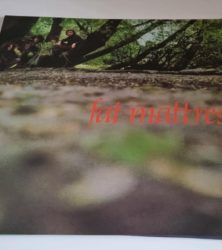 Buy this rare Fat Mattress record by clicking here