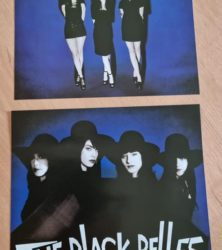 Buy this rare Black Belles record by clicking here